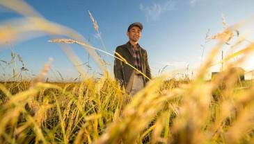 稻人有道——种粮大户李学明的十余年坚守