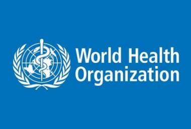"""世卫组织专家:人类传染病疫情中应慎用""""群体免疫""""这一术语"""