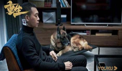 网剧《重生》独立案件烧脑 人际关系等话题引热议
