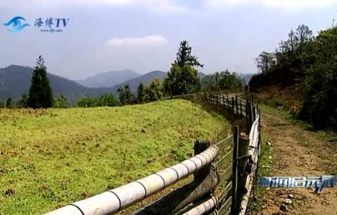 为了保护饮用水源,他们成立了福建首个村级民间环保组织