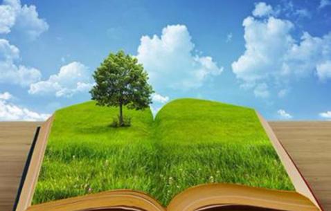以习近平生态文明思想为根本遵循——一论开创新时代生态文明建设新局面
