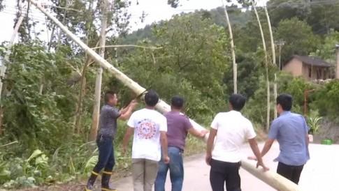 谢谢你,与台风战斗的人们!