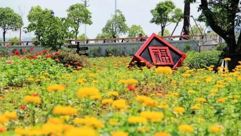 1月20日,来福州花海公园走出个红火大年吧!