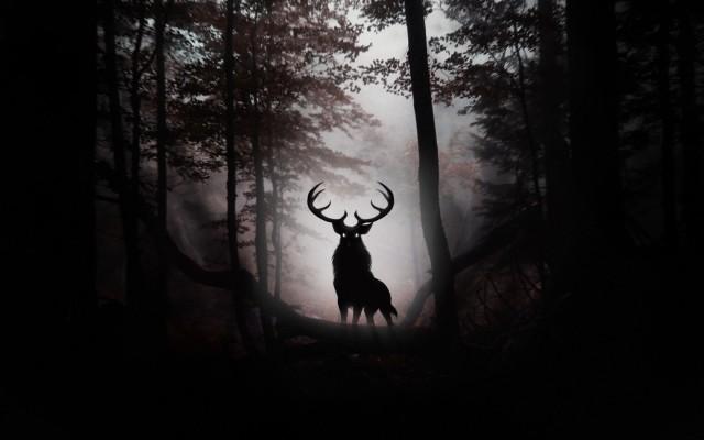 黑色背景麋鹿素材矢量图