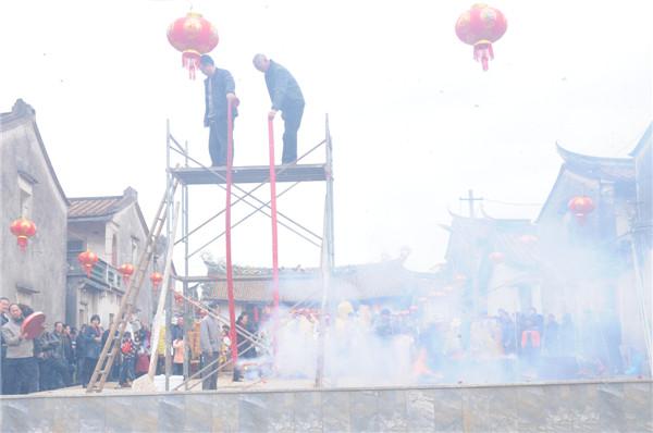 【代表】宗族家园传承的视频-梧龙村文化白天鹅图片