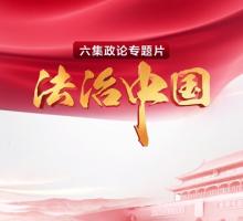 法治中国 精编版