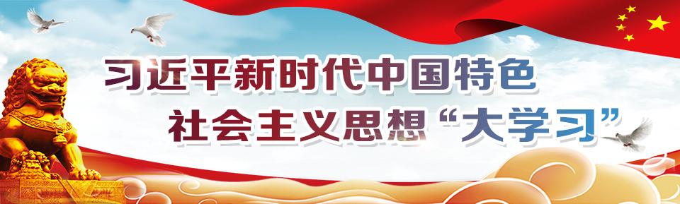"""习近平新时代中国特色社会主义思想""""大学习"""""""
