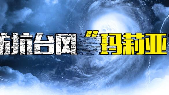 """防抗台风""""玛莉亚"""""""
