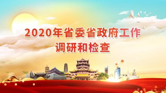 2020年省委省政府工作调研和检查