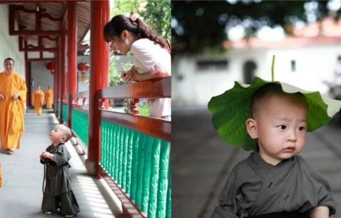西禅寺超萌小和尚