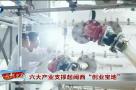 """六大产业支撑起闽西""""创业宝地"""""""