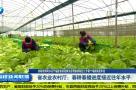 省农业农村厅:春耕春播进度接近往年水平