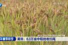 莆田:6.32万亩中稻抢收扫尾