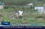 走向我们的小康生活 泉州泉港区黄田村:山沟沟村变身绿色花园