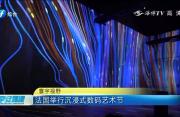 法国举行沉浸式数码艺术节