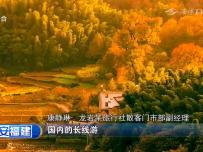 龙岩:国庆长假出游预订火爆