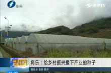 将乐:给乡村振兴播下产业的种子
