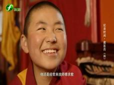 《纪录时间》藏医药(四)