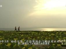 《海峡第一村的战争与和平》