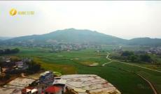 《客家人》龙岩市三八红旗手标兵陈福玉