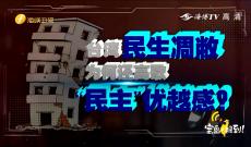 """《宝岛, 报到!》台湾民生凋敝为何还高歌""""民主""""优越感?"""