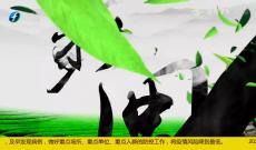 《多彩闽茶》4月12日