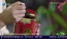 《多彩闽茶》7月26日