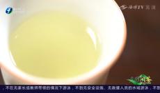 《多彩闽茶》8月30日