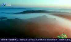 《多彩闽茶》8月23日