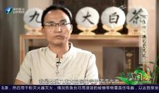 《多彩闽茶》8月9日