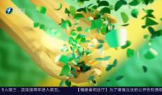 《多彩闽茶》9月27日