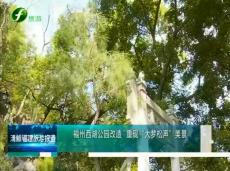 """《清新福建旅游报道》福州西湖公园改造 重现""""大梦松声""""美景"""