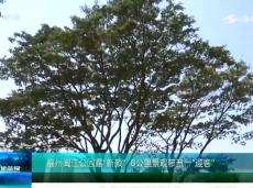"""《清新福建文旅简报》福州闽江公园露""""新颜"""" 6公里景观带五一""""迎客"""""""