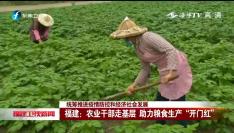 """福建:农业干部走基层 助力粮食生产""""开门红"""""""