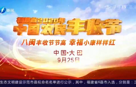 福建省2020年中国农民丰收节(大田站)